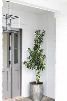 An iron and glass cube lantern hangs in front of a gray dutch front door with sidelights positioned beside a galvanized metal planter placed in front of a white paneled exterior wall. Front Door Plants, Front Porch Planters, Glass Front Door, Front Door Decor, Porch Plants, Glass Doors, Indoor Plants, Interior And Exterior Angles, Exterior Wall Light