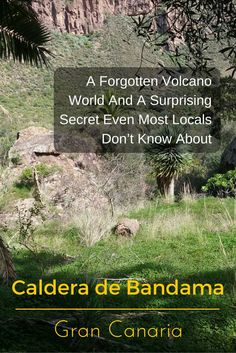 Visiting the Caldera de Bandama promises an exciting experience you'd never expect to have in #GranCanaria.