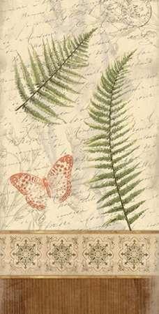 Spice Ferns