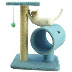 Armarkat Cat Tree Model Sky Blue - Go Shop Pet Supplies Small Cat Tree, Dog Training Near Me, Cat Gym, Cat Activity, Tiny Cats, Cat Perch, Cat Towers, Cat Condo, Pet Furniture