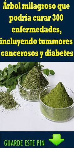 How to Living With Diabetes Herbal Remedies, Health Remedies, Natural Remedies, Keto Recipes, Cooking Recipes, Healthy Recipes, Diabetes Tipo 1, Diy Projects Plans, Moringa Oleifera