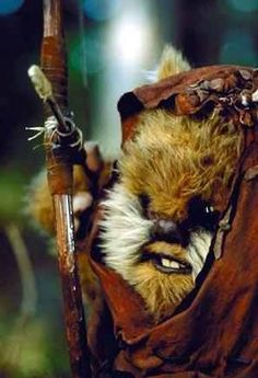 Return of the Jedi I want this little guy!! he's so cute!!! aka 11 yr. old Warwick.