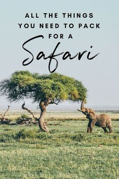 The Ultimate Kenya Packing list. What to pack for a trip to Kenya? This list is aimed at backpackers traveling to Kenya / East Africa and also applies to other countries in sub-Saharan Africa. Ultimate Packing List, Packing List For Travel, Travel Tips, Packing Tips, Solo Travel, Vacation Packing, Packing Checklist, Train Travel, Travel Advice