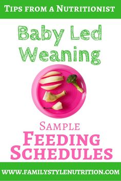 Baby Led Weaning Sample Feeding Schedules from months Are you just starting solids with your baby? Confused about when, what and how much to offer? Check out these Baby Led Weaning Sample Feeding Schedules beginning at 6 months of age. Baby Led Weaning First Foods, Weaning Foods, Baby First Foods, Baby Weaning, Baby Led Weaning Book, Eating Schedule, Baby Feeding Schedule, Baby Schedule, Baby Food By Age