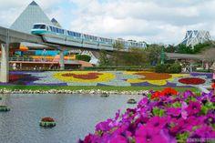 Tips & Tricks using Walt Disney World Resort Transportation!
