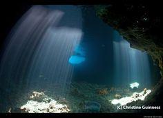 Mission Blue: Exuma Cays Land & Sea Park. Thunderball grotto