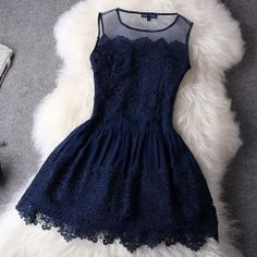 navy lace and mesh cocktail dress
