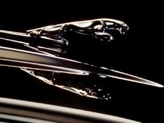 I Love the Jaguar car logo. So Cool.