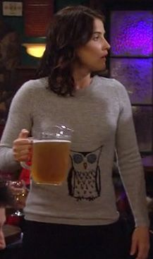 How I met your mother - Robin Scherbatsky - Robin Sparkles - Cobie Smulders - HIMYM Robin Scherbatsky, Owl Sweater, Gray Owl, Cool Outfits, Fashion Outfits, Himym, How I Met Your Mother, I Meet You, Sweater Weather