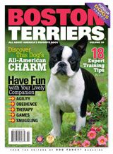 Dog Book - Popular Dogs: Boston Terriers