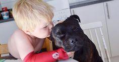 15 fotos de bebês com cachorros que farão com que você queira um pet em casa