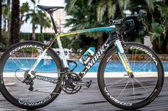 Vincenzo Nibali's Specialized S-Works Tarmac, Dubai Tour - 2015