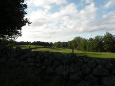 This is the vue from my studio. I love this environment so much!  And we share it with such nice neighbours: ravens, bats, toads, deers, hares, a fox, red kites, cranes, a hedgehog, squirrels, sheep, pigs, pheasants, parrots and Islandic horses.