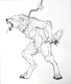Free Werewolf coloring pages | Fantasy Coloring Pages ...