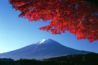 Mount Fuji; one of the world's most beautiful volcanoes.