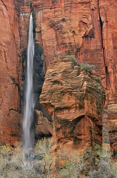 Zion National Park; photo by Dean Pennala