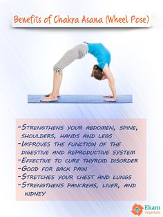 Benefits of Chakrasana or Wheel Pose  #yoga #Benefitsofyoga #WheelPose #asana #posture #Chakrasana #yogalovers #Health #yogaforthyroid #thyroid #yogapose #yogaasana #people #yogalovers #yogis #yogini #spine #backpain #liver