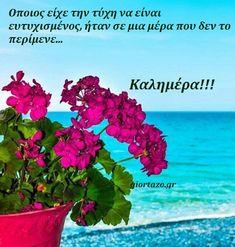 giortazo.gr: Καλημέρα.Εικόνες με λόγια...giortazo.gr Good Day, Good Morning, Plants, Art, Stones, Art Background, Rocks, Hapy Day, Bonjour