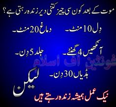 1000+ images about islam in urdu on Pinterest | Islamic ...