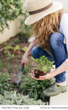 Grow A Garden Green
