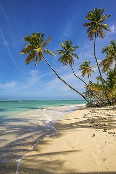 Pigeon Point Beach, Tobago.