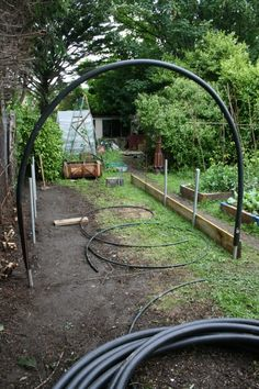Garden Shrubs, Garden Trellis, Garden Landscaping, Greenhouse Farming, Diy Greenhouse, Biodynamic Gardening, Permaculture Garden, Pergola, Garden Arches