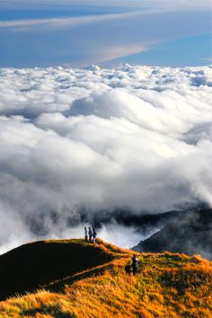 Standing above the sea of clouds.. it's definitely more fun in the Philippines!!! :-) [Mt. Pulag, Philippines]