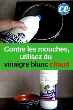 Vinaigre Blanc Chaud : Le Répulsif le Plus Efficace Contre les Mouches. - Vinaigre Blanc Chaud : Le Répulsif le Plus Efficace Contre les Mouches. House Cleaning Tips, Green Cleaning, Cleaning Hacks, Antibacterial Soap, Household Chores, Good House, White Vinegar, Garden Care, Getting Things Done