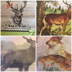 paper napkin decoupage Deer Stag 33cms 4ply