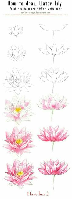 20 Delicate Colorful Watercolor Flowers Painting Tutorials In Images 20 zarte bunte Aquarell Blumen malen Tutorials in Bildern Plant Drawing, Painting & Drawing, Drawing Flowers, Lotus Painting, Lotus Drawing, Lilly Flower Drawing, Tattoo Flowers, Water Drawing, Watercolor Water
