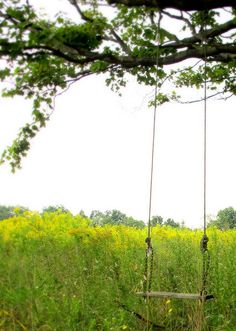 my grandfather built me a swing like this. On my ninth birthday I woke up to him hanging the ropes right under my tree fort.
