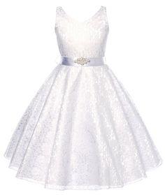 Dress for less lovely lace v-neck flower girl dress
