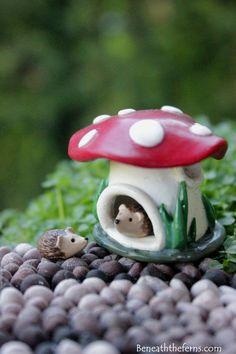 Miniature mushroom house tiny fairy garden by Beneaththeferns…
