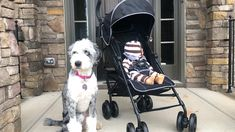 Summer 3Dlite+ Convenience Stroller Review & GIVEAWAY Travel Stroller, Umbrella Stroller, Everything Baby, Baby Gear, Diaper Bag, Baby Strollers, Car Seats, Giveaway, Newborns