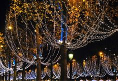 Christmas lights on les Champs Elysees in Paris