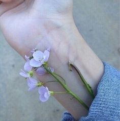 soulmate24.com Photo #wrist #veins #flower #pretty #nature