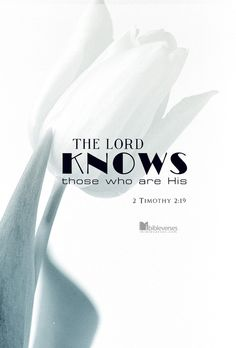 """Nevertheless, God's solid foundation stands firm, sealed with this inscription: """"The Lord knows those who are his,"""" and, """"Everyone who confesses the name of the Lord must turn away from wickedness."""" 2 Timothy 2:19"""