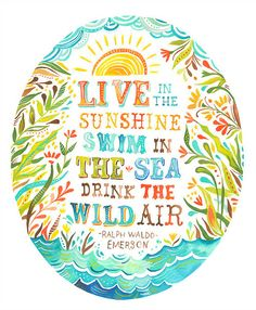 Live in the sunshine , swim in the sea , drink the wild air -Ralph Waldo Emerson- -Katy Daisy- Ralph Waldo Emerson, Image Beautiful, Beautiful Words, Beautiful Life, Beautiful Posters, Beautiful Morning, Wonderful Life, Beautiful Beaches, Frases Cliche