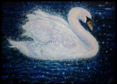 I paint birds as a symbol of freedom and as messengers of the soul.  The Swan is a universal symbol of grace.  This Swan I saw one evening in Spring,