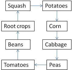 Crop rotation - easy to remember guide!