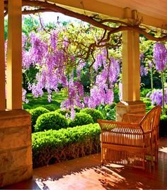1011HG-sydney-garden-15-350