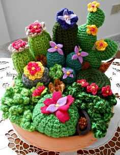 Cactus photos, no pattern. like the prickly pear and felt flowers