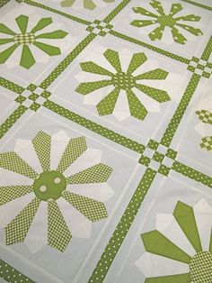 Green Daisy Quilt kit available at Hollyhill Quilt Shop in Oregon Dresden Plate Patterns, Dresden Plate Quilts, Quilt Patterns, Quilting Projects, Quilting Designs, Two Color Quilts, Cute Quilts, Quilt Border, Amish Quilts