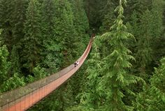 """North Vancouver, B., Canada ~ """"Capilano Suspension Bridge ~ Swaying above the Capilano River, this footbridge has tested nerves since Places To Travel, Places To See, Places Around The World, Around The Worlds, America Continent, Vancouver City, North Vancouver, Universal City, Suspension Bridge"""