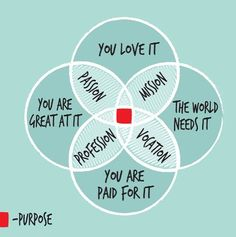 The sweet spot where passion, mission, profession and vocation all intersect.