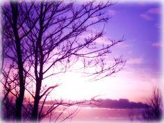 purple and pink landscape