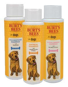 Burt's Bees has new pet line of products ♥ http://burtsbeespets.com