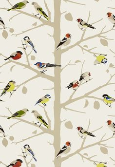 Schumacher Wallpaper birds on branches, for powder room Fabric Wallpaper, Of Wallpaper, Pattern Wallpaper, Wallpaper Designs, Nature Wallpaper, Office Wallpaper, Amazing Wallpaper, Bathroom Wallpaper, Eclectic Wallpaper
