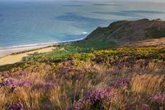 10 Jaw dropping walks in South West England Including Exmoor National Park Best Places To Eat, Great Places, Days Out In England, Best Pubs, Country Hotel, Walking Routes, Uk Holidays, North Devon, Get Outdoors