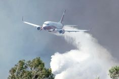Queensland to get its own firefighting plane after years of borrowing from NSW — ABC News Female Firefighter Quotes, Firefighter Love, Australian Politics, Australian Bush, Central Park Manhattan, Australia Tourism, Airlie Beach, Honeymoon Places, Cairo Egypt